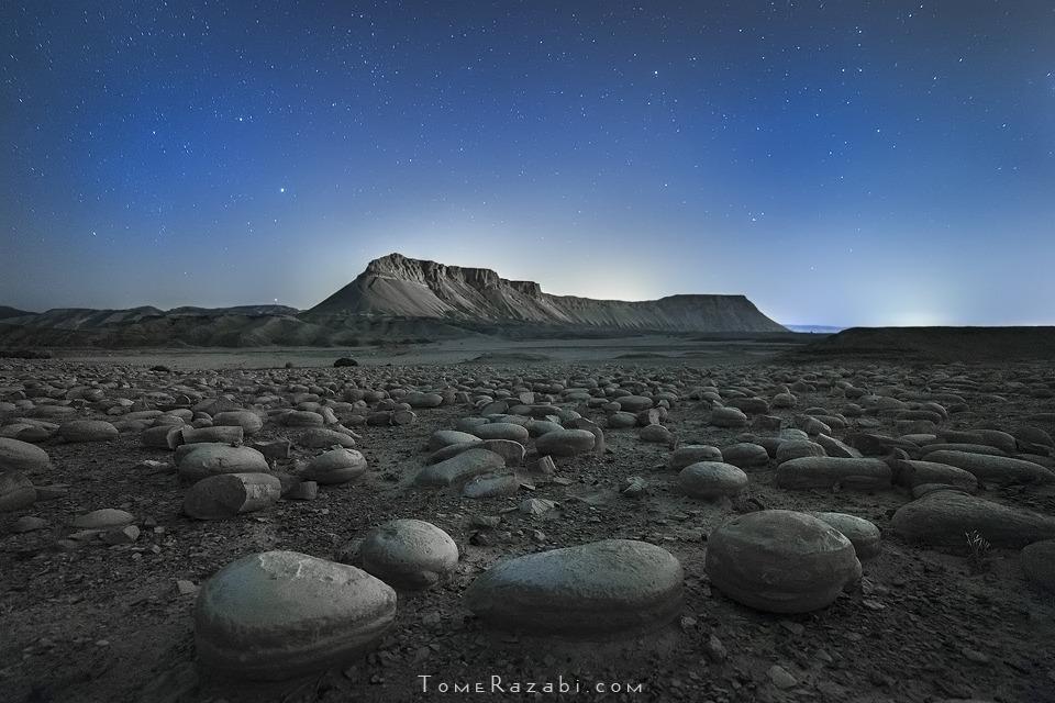 צילום נוף הר צין שדה הבולבוסים - תומר רצאבי