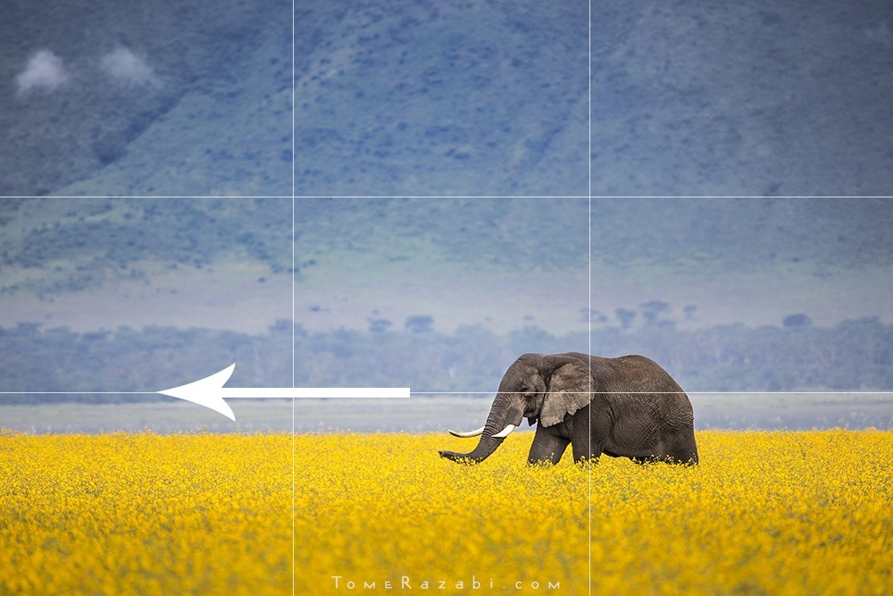 rule of thirds and breath space