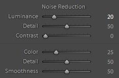 Editing landscape photos -noise reduction