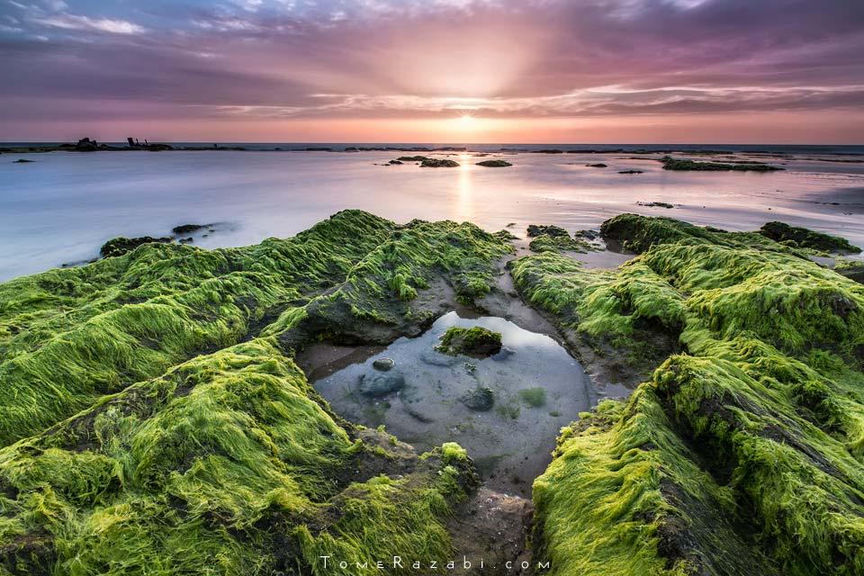 קורס צילום נוף - תומר רצאבי