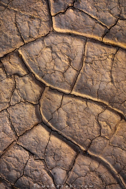 Mud cracks of Zin desert river bed - Tomer Razabi