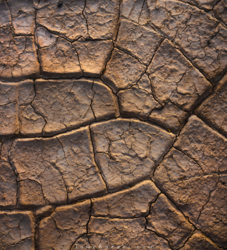 Desert mud cracks Textures and Abstracts - Tomer Razabi