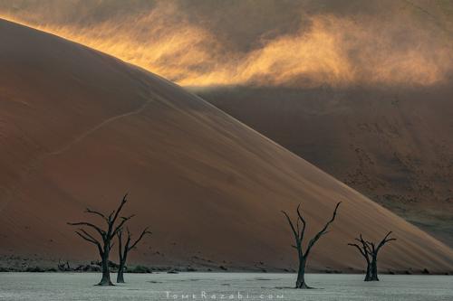 Namibia Deadvlei - Tomer Razabi