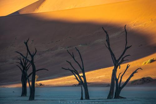 צילום נוף שמורת דדווליי בזריחה בנמיביה - תומר רצאבי