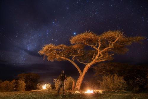 צילום נוף וכוכבים בלילה בטיול ספארי בטנזניה - תומר רצאבי