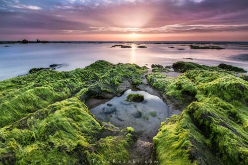 שקיעה בחוף פלמחים קורס צילום נוף - תומר רצאבי
