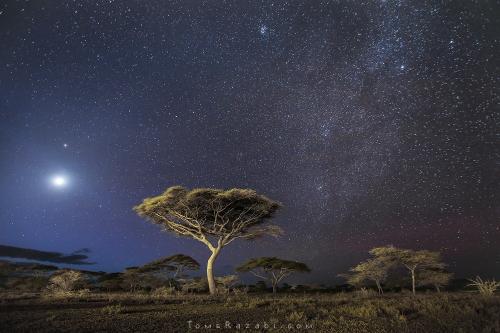 Tanzania Serengeti astrophotography - Tomer Razabi